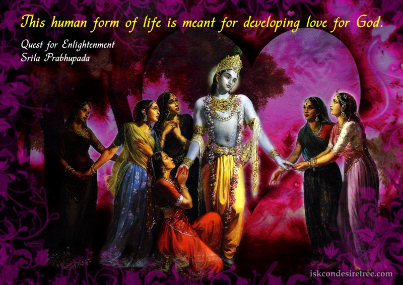 Quotes By Srila Prabhupada On Goal Of Human