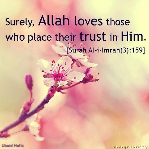 Quran Quotes About Love Inspiration Surely Allah Love Those Islamic Quotes Directory