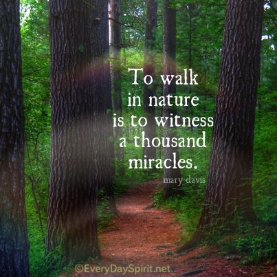 To Walk In Nature