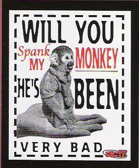 Monkey Love P O My Monkeymymonkey Jpg