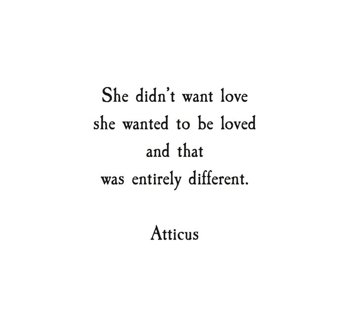 From The Book Love Her Wild Atticus