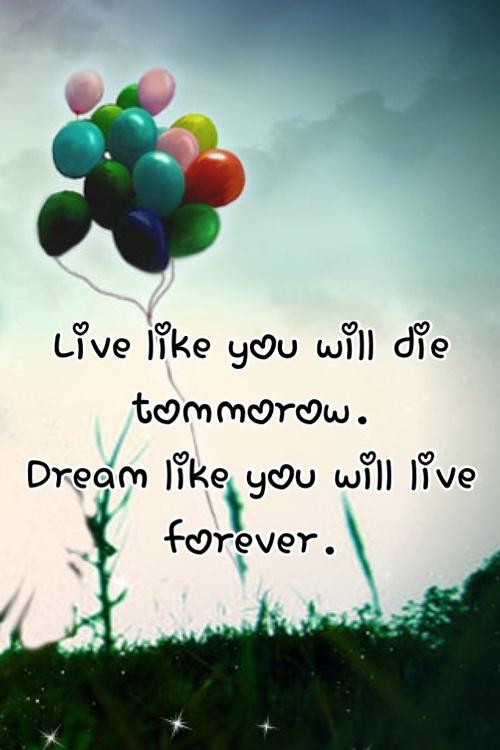 Dream Cute Love Quotes