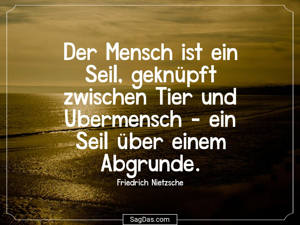 Friedrich Nietzsche Zitat Der Mensch Ist Ein Seil