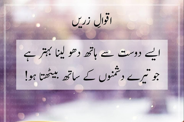 If You Are Too Struggling With Friendships And Enemies These Urdu Quotes About Friends And Enemies Might Align Your Thoughts