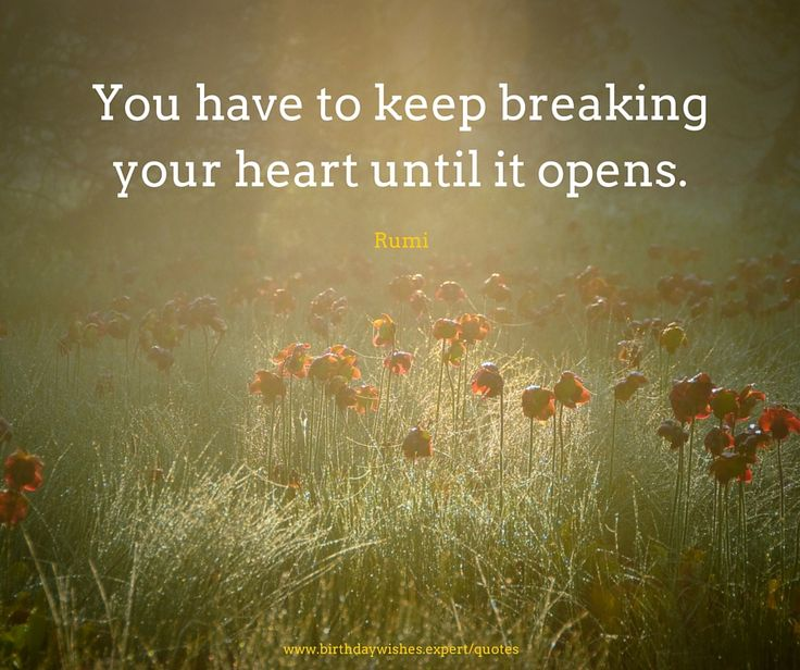 As The Quote Says Description  Rumi Quotes