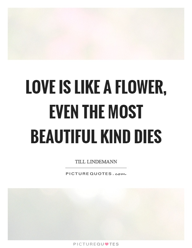 Love Is Like A Flower Even The Most Beautiful Kind Dies Picture Quote