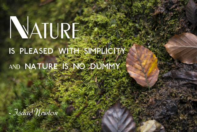Nature Is Pleased With Simplicity And Nature Is No Dummy Isaac Newton