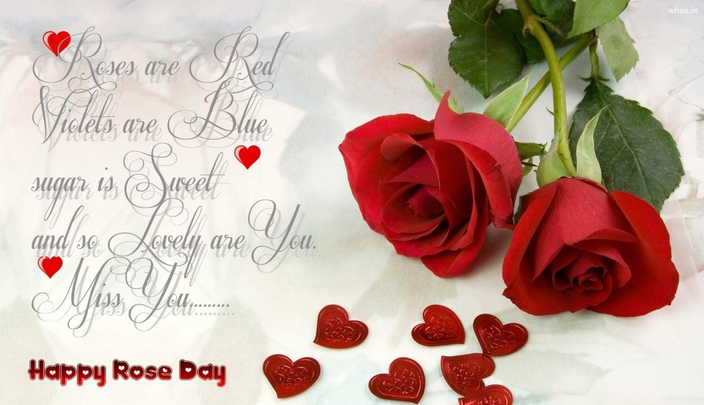 Red Rose With Love Quotes  Amazing Red Rose Love Quotesfather Style