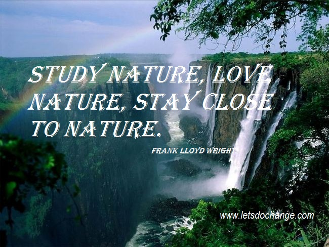Study Nature Love Nature Stay Close To Nature