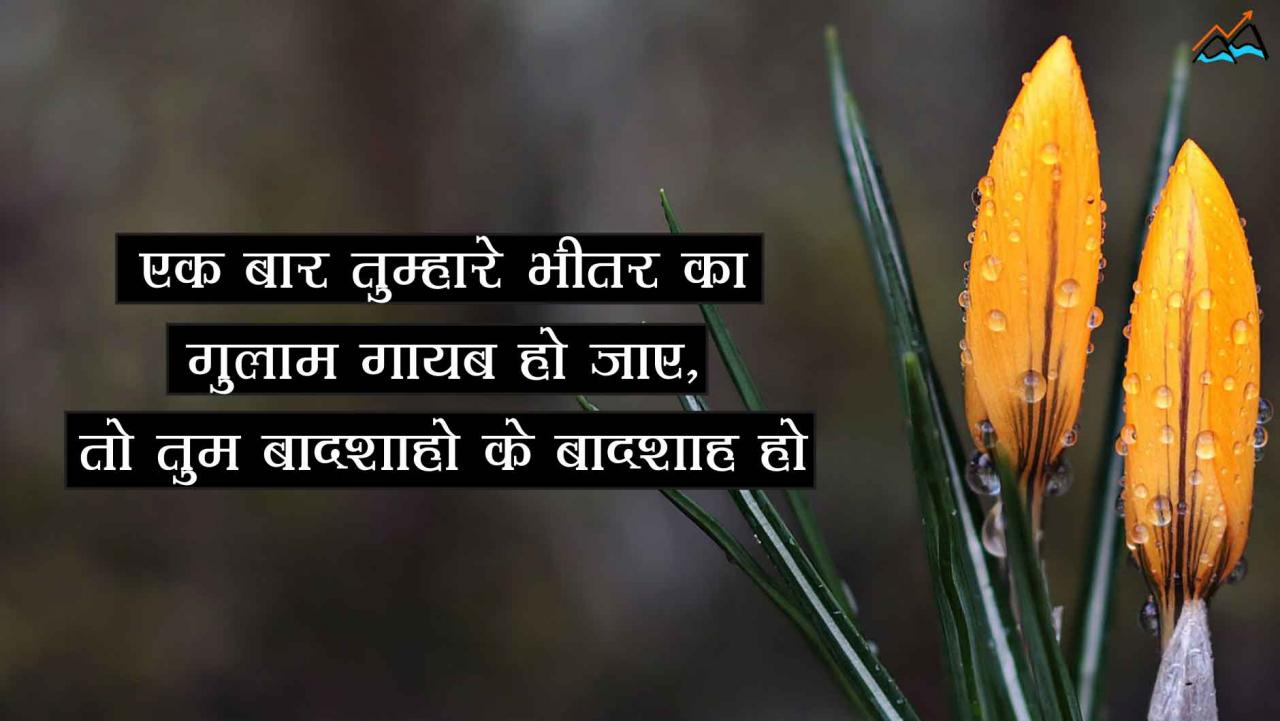 Rumi Love Quotes In Hindi Famous Rumi Love Quotes In Hindi Popular Rumi Love Quotes In Hindi