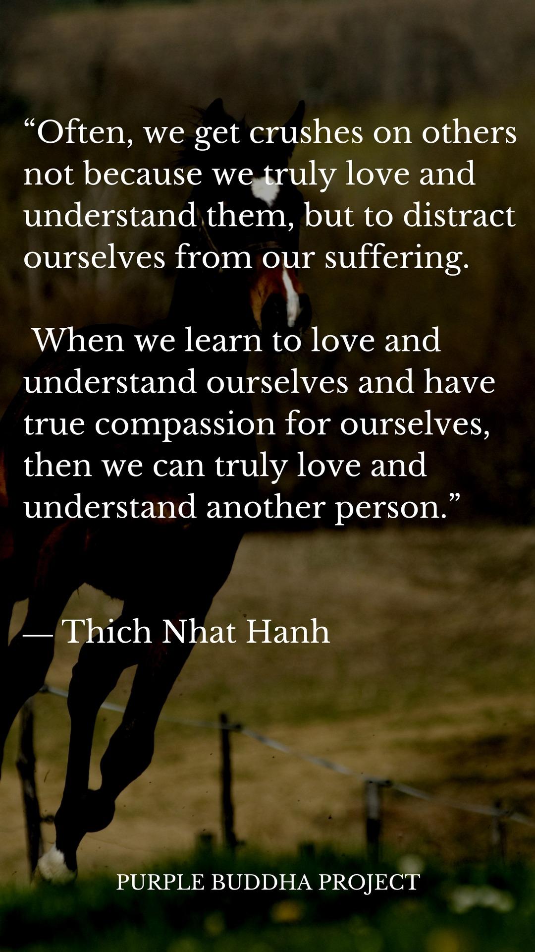 Buddha Quotes About Friendship Purple Buddha Quotes Follow Tumblr Blog Purple Buddha Quotes For