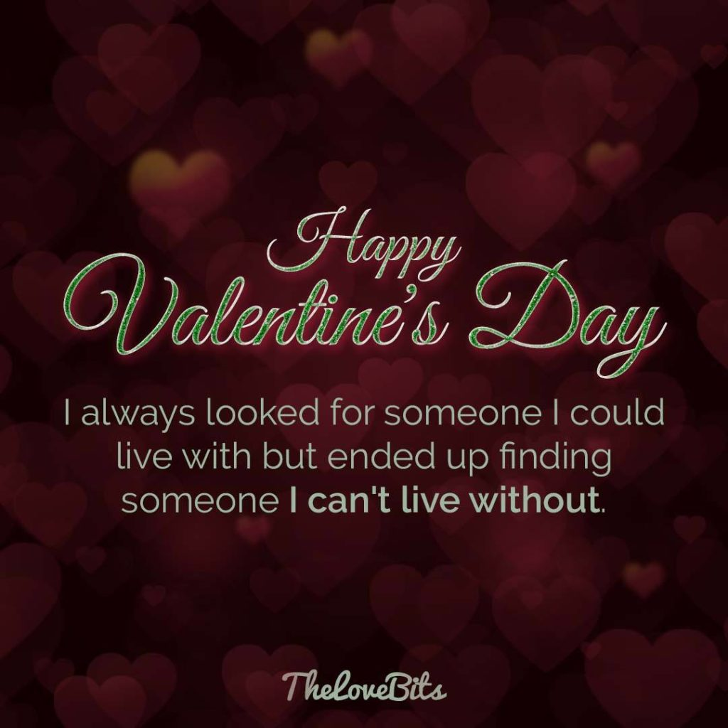 Valentines Day Without You Quotes