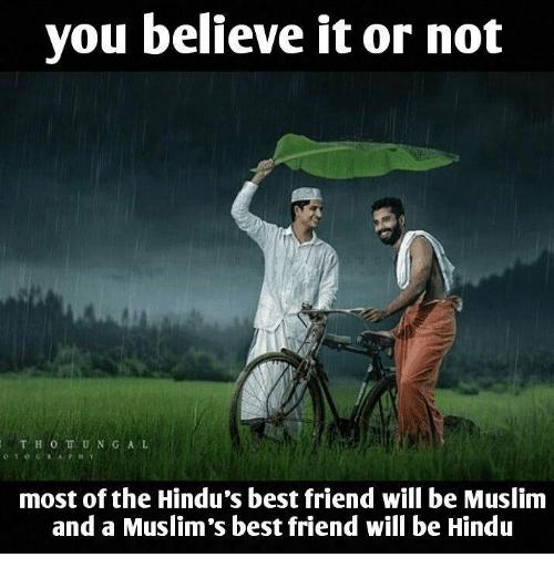 Best Friend Memes And Muslim You Believe It Or Not T H O U N G A L Most Of