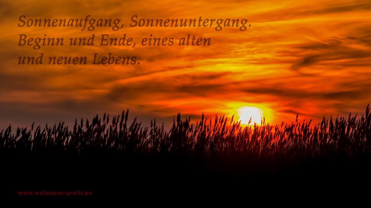 Image Result For Gute Zitate Freundschaft