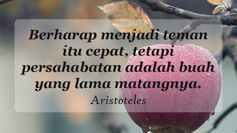 Kata Kata Indah Untuk Sahabat Aristoteles