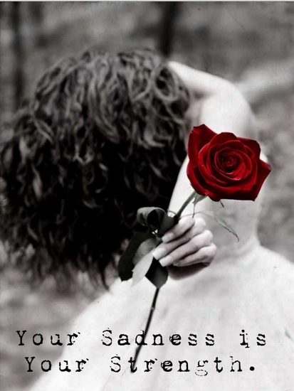 Red Rose Positive Sad Quote For You