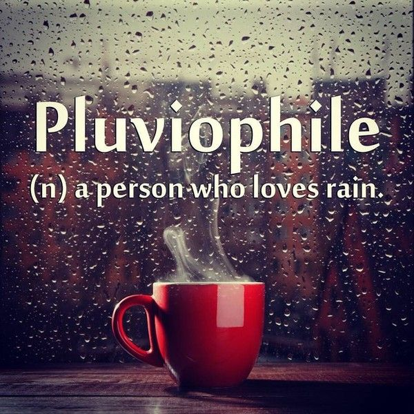 Perfect For A Rainy Day Rain Rainy Days Raindrops Rain Stormy Days Happy Rain Love The Rain Rainy Skies Umbrellas