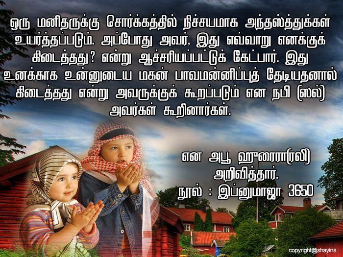 Islam Quran Quran Verses
