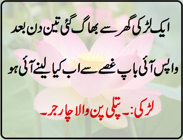 Funny Quotes About Life In Urdu Image Quotes At Relatably Com