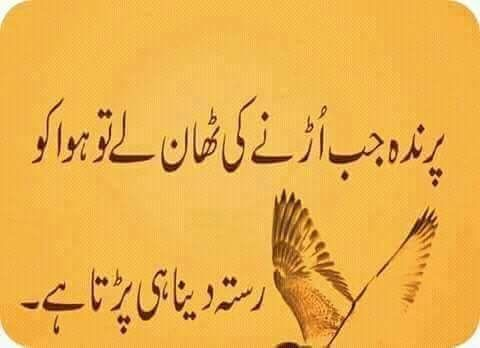 Urdu Quotes Islamic Quotes Qoutes Urdu Poetry Inspire Quotes Daughter Beautiful Things Inspring Quotes Dating