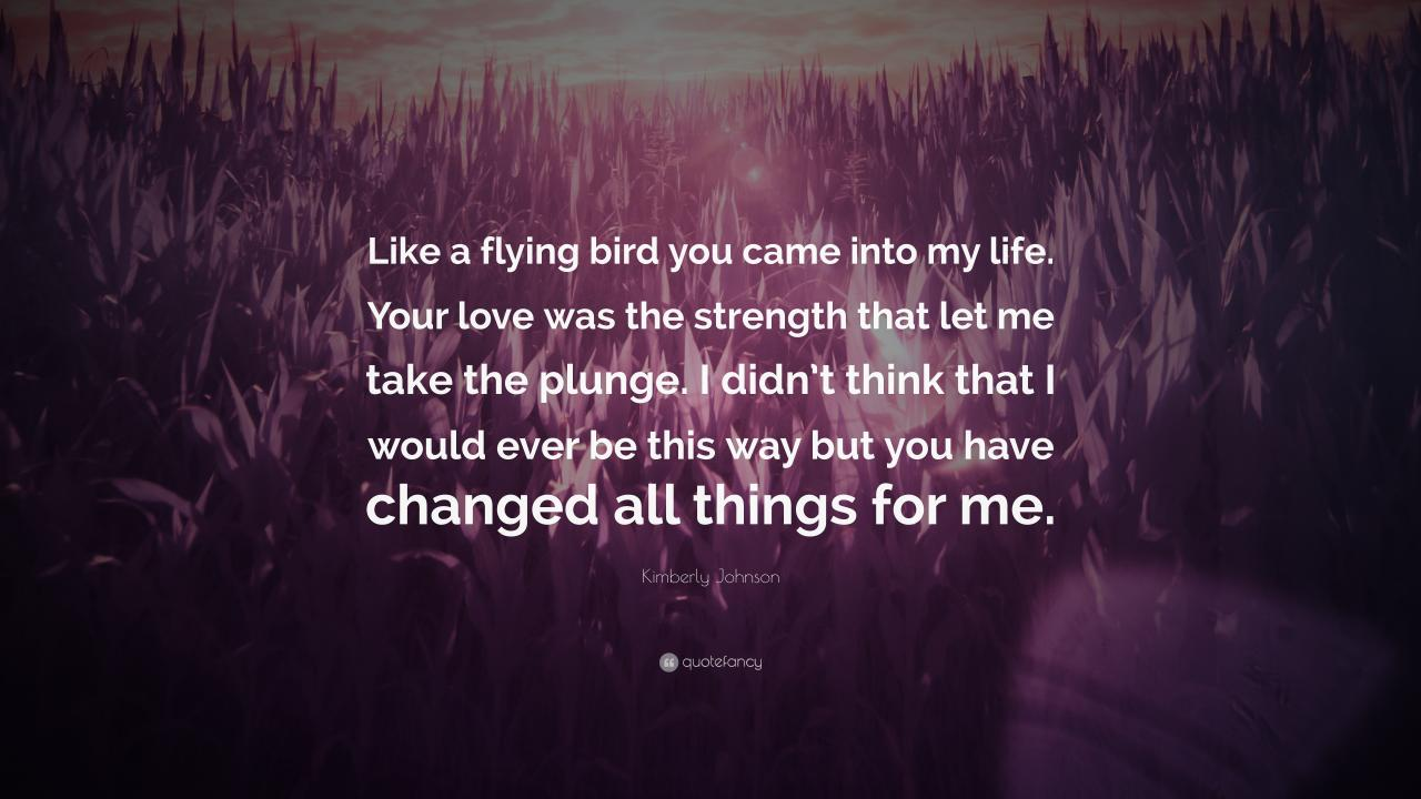 Kimberly Johnson Quote Like A Flying Bird You Came Into My Life Your