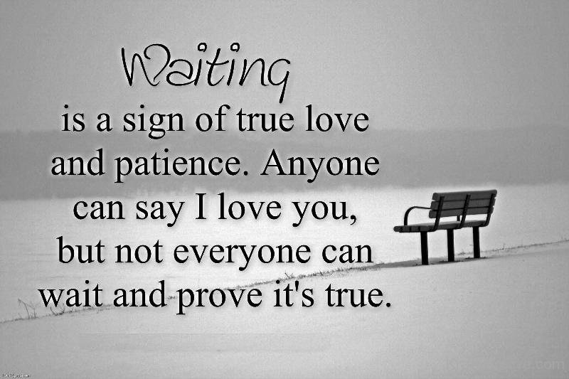 Quotes About Patience And Love We Should Remember