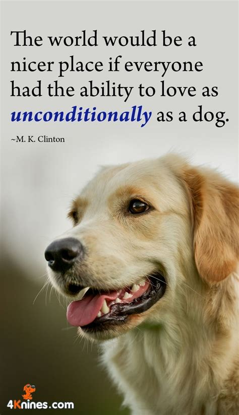 Gallery Of Inspirational Quotes Dogs Love  Best Dog Quotes Images