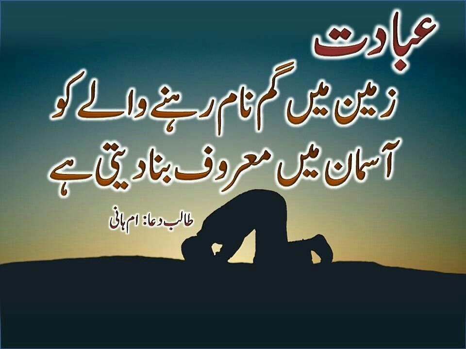Is Great Urdu Quotesislamic