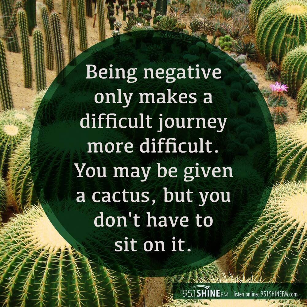 Cactus Quote Love It