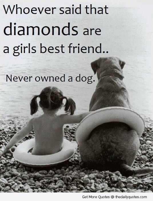 Dog Love Quotes Motivational Love Life Quotes Sayings Poems Poetry Pic Picture P O