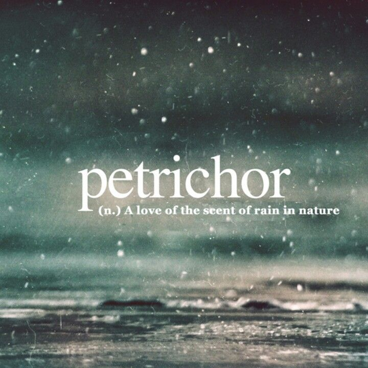 I Have Always Been In Love With Rain But I Never Knew There Was A Name