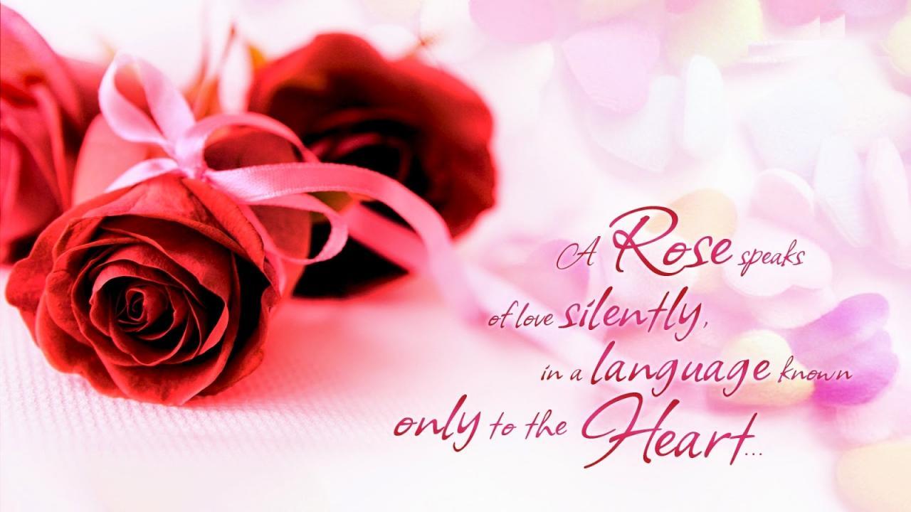 A Rose Speaks Of Love Pink Bg Hd