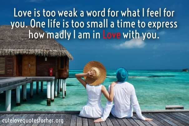 Cute Honeymoon Quotes