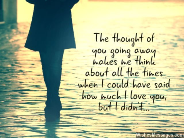 Goodbye Quote I Should Have Said I Love You Before Leaving