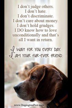 I Love My Dog Quotes Tumblr