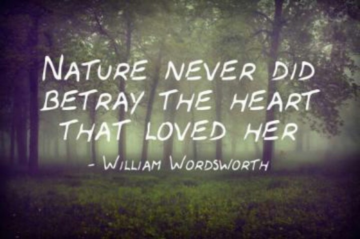Nature Never Did Betray The Heart That Loved Her William Wordsworth