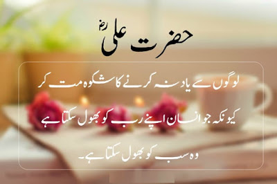 Shayari Urdu Images With Picture