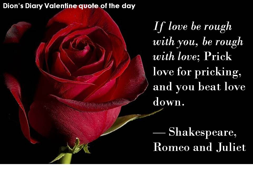 Dions Diary Valentine Quote
