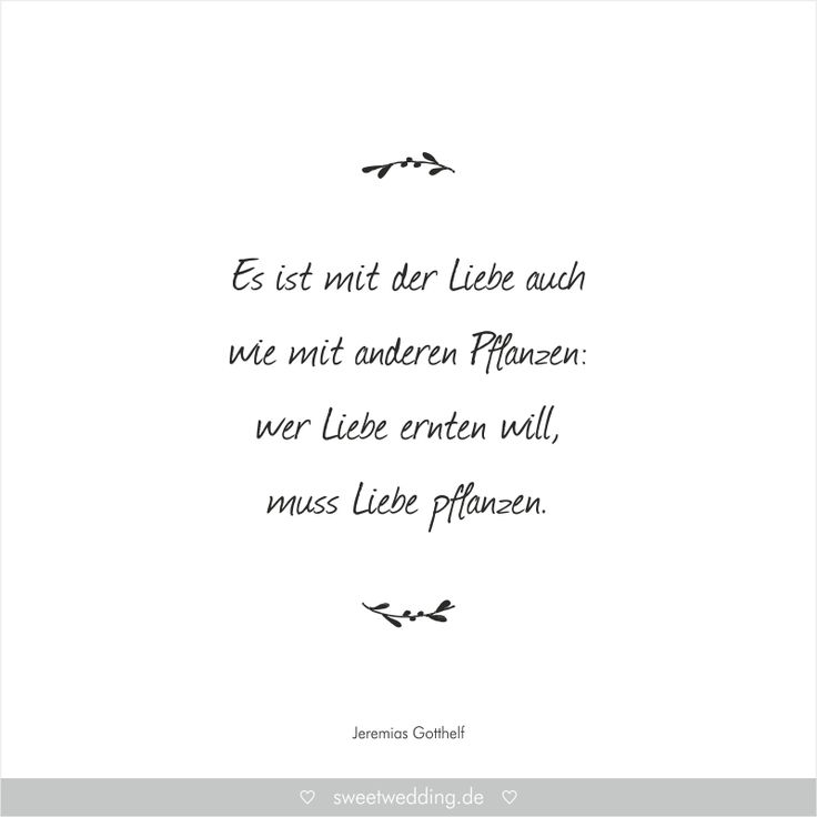 Best Images About Trauspruche Zitate On Pinterest Albert Camus Buddha And Thank You For
