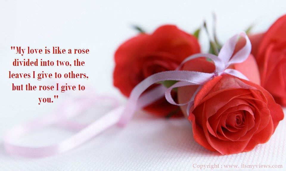 In Spite Of The Fact That Giving Receiving Red Roses Is An Age Old Custom It Still Has The Ability To Touch That Inborn Harmony In The Heart Of The