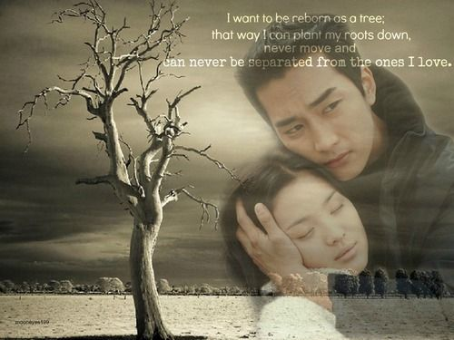 Korean Drama Quotes