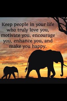 Keep People In Your Life Who Truly Love You Quote Elephant