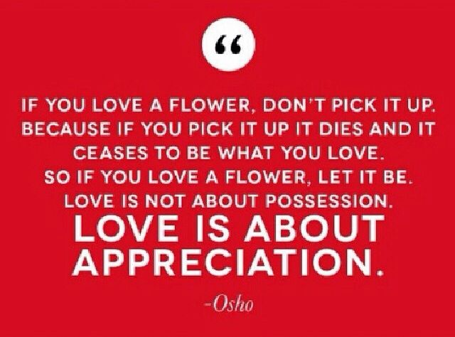 Visual Inspiration Love Is About Appreciation Not Possession Daily Love With Mastin Kipp