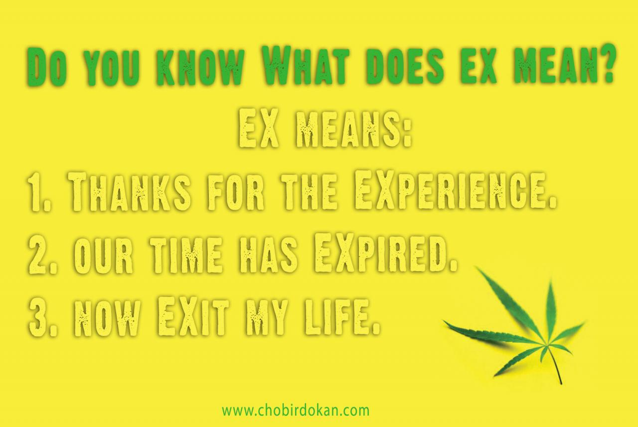 Dear Ex Boyfriend Quotes