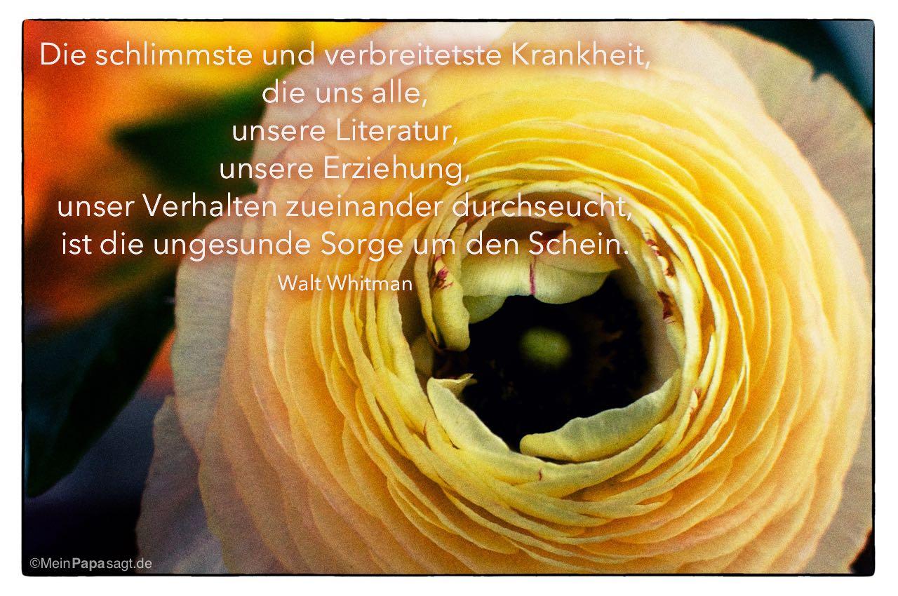 Image Result For Nietzsche Zitate Krankheit