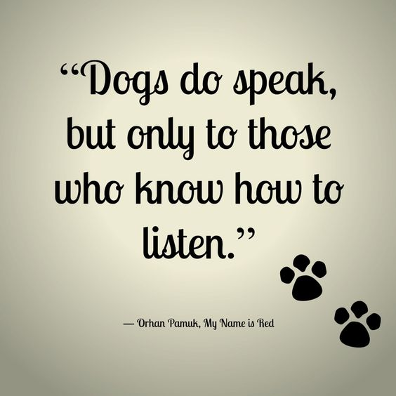 The More I Learn About People The More I Like My Dog Mark Twain Dog Quotes Like