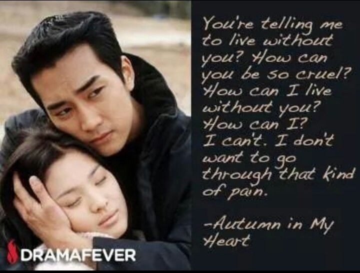 Autumn In My Heart  C B Quotes About True Lovedrama