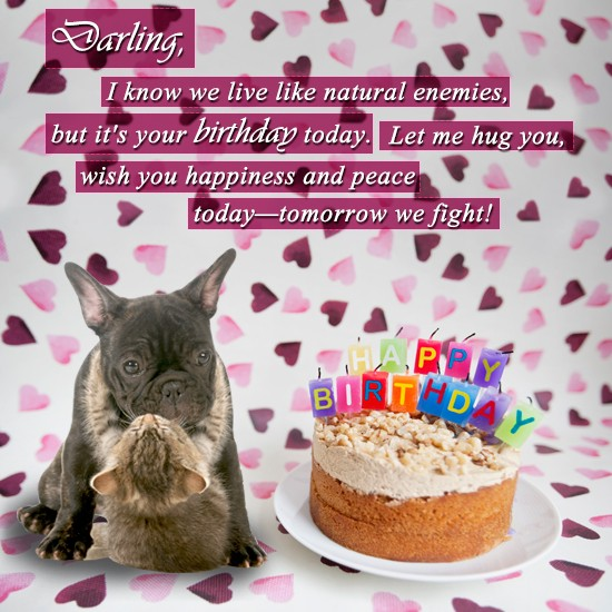 Birthday Quotes For Husband From Wife Quotesgram