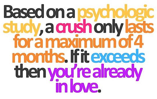 Funny Crush In Love