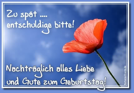Image Result For Zitate Entschuldige Ich Liebe Dich